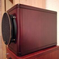jvc ex-n50 woodcone new