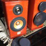1-akusticheskie-kolonki-jvc-victor-woodcone-sx-wd500-v-nalichii-44
