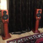 3-akusticheskie-kolonki-jvc-victor-woodcone-sx-wd500-v-nalichii-44